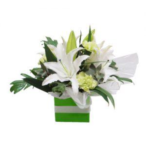 Oriental Lilliums Box