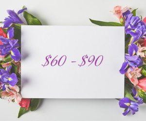 $60 - $90