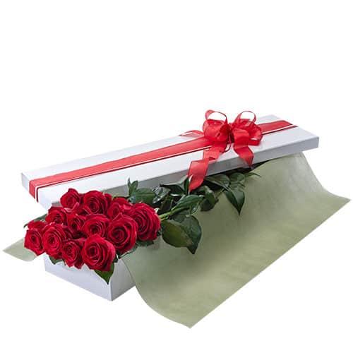 Seduction 1 Dozen Roses